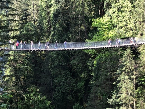 Fun things to do in Vancouver - Capilano Suspension Bridge